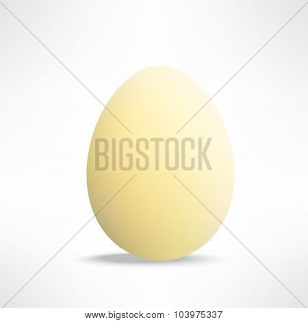 Vector realistic yellowish egg on white background