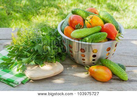 Fresh ripe vegetables on garden table