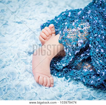 beautiful newborn baby's legs on a blue blanket