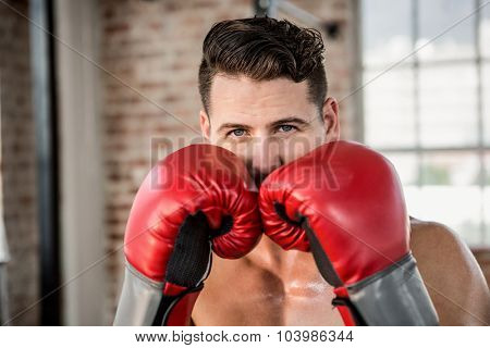 Portrait of muscular man wearing boxing gloves at the gym