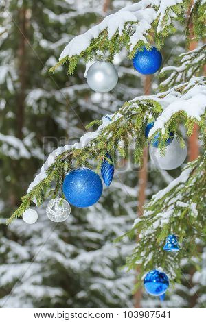 Christmas Festive Brilliant Baubles Silver And Blue Ornaments Outdoors On Snowy Fir Branches