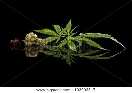 Cannabis Isolated On Black.