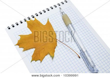 pen and yellow maple leaf