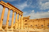 picture of euphrat  - ancient palmyra in syria at early morning - JPG
