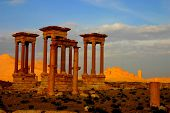 image of euphrat  - ruins of ancient palmyra in syria at early morning - JPG