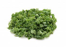 image of cruciferous  - Chopped kale isolated on a white background - JPG