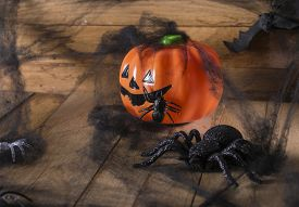 stock photo of antichrist  - Halloween party toys with pumpkin and spiders - JPG