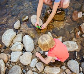 image of baby frog  - a mother taking a photo with a cell phone of her child looking at a frog in a stream or river during summer - JPG