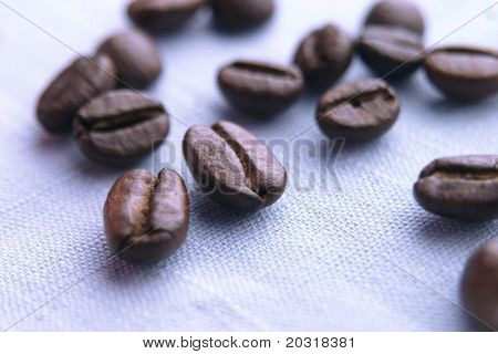 coffee beans on cloth