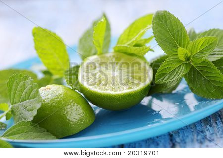 fresh herbs and lime, ingredients for a mojito cocktail