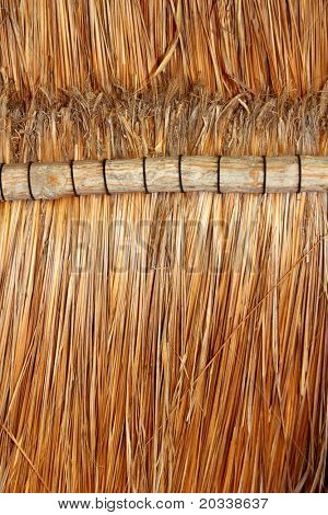 palapa tropical Mexico wood cabin roof detail indoor