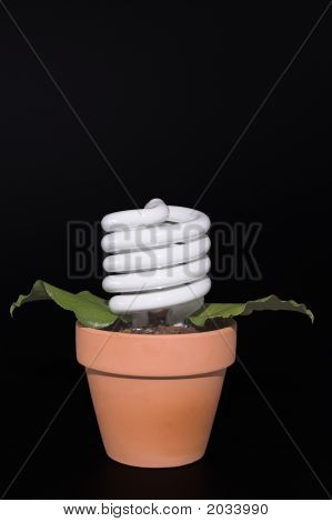Light Bulb Potted Plant