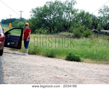 Texas Traveler