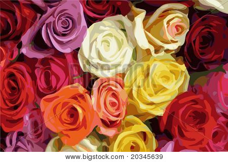 Multi Color roses vector illustration.  Manually traced with 32 colors.