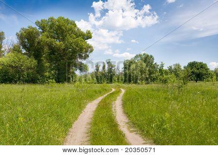 Rural Road In Steppe