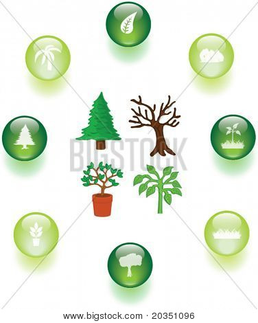 trees and plants illustrations and buttons set