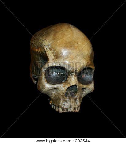 Skull On Blackjpg