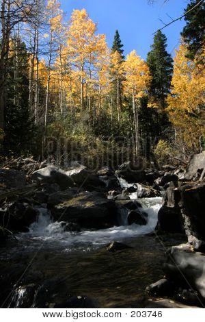 West Fork Clear Creek Gunshot Rapid In Fall