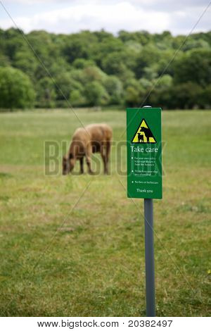 Warning sign and advice for walking through a field of cattle.