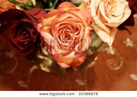 roses arranged in a festive bouquet - soft sepia