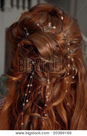golden-brown curly mane