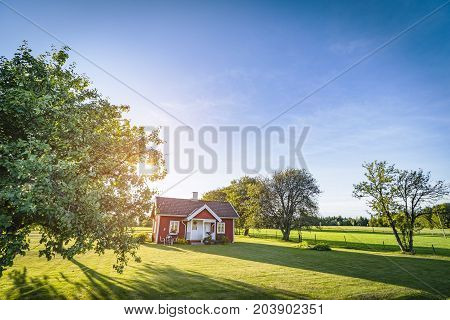 Small red house on a swedish countryside landscape in the summer with green fields and blue sky
