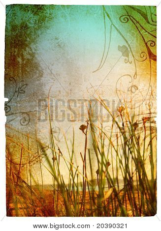 Grunge background with stained paper texture and wild grass