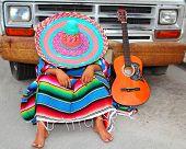 Постер, плакат: Ленивый НПД мексиканской парня спать на гранж автомобиль с гитарой и пончо