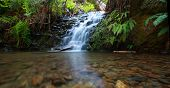 stock photo of redwood forest  - Waterfall in redwood forest - JPG