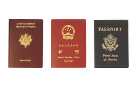 picture of passport template  - Triple Identity - JPG