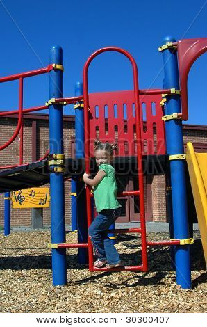 Ascending Playground Ladder