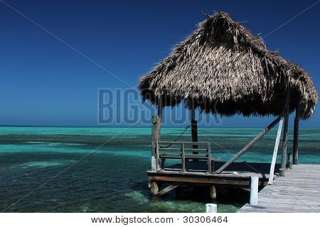 Thatched beach hut