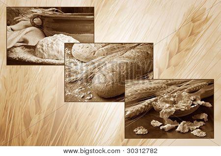 Collage de fondo de trigo en tonos sepia.  Imágenes de macro individual pequeño de masa de harina, pan, y