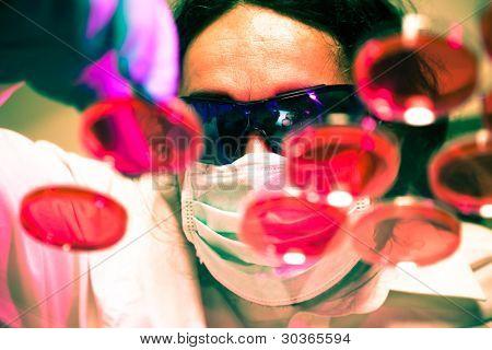 Scientist man manipulates Petri dishes
