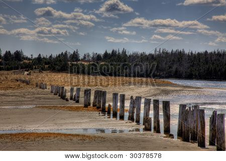 Wood Poles at Low Tide