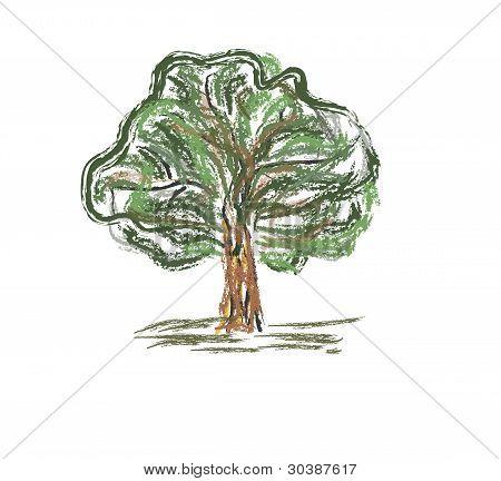 Colorida árvore velha. Esboço rápido lápis mão desenho ilustração no doodle engraçado estilo