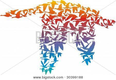 Rainbow Goose.eps