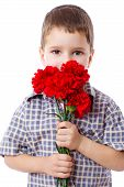 stock photo of carnations  - Boy with bouquet of red carnations - JPG
