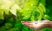 Hand Holding Light Bulb Against Nature On Green Leaf With Icons Energy Sources For Renewable, Sustai poster