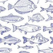 Seamless Pattern With Fish Hand Drawn With Contour Lines On White Background. Backdrop With Marine A poster