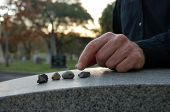 pic of bereavement  - Close up of a left hand leaving a pebble on a headstone in cemetery - JPG