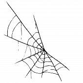 Web Icon. Vector Illustration Of A Spider Web. Net, Web Spider Hand Drawn. poster