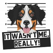 Illustration Mugshot Bernese Mountain Dog - The Guilty Dog ​​gets A Police Photo. Dog Lovers And Dog poster