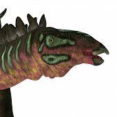 Miragaia Dinosaur Head 3d Illustration - Miragaia Was A Armored Stegosaurid Sauropod Dinosaur That L poster