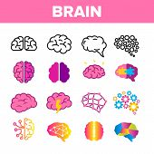 Brain, Neurology Organ Vector Linear Icons Set. Human Brain, Brain-shaped Stylized Speech Bubble Thi poster