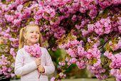 Pollen Allergy Concept. Kid On Pink Flowers Sakura Tree Background. Allergy Remedy. Child Enjoy Life poster