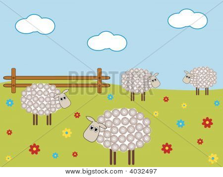 Farm Sheep
