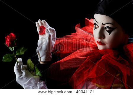 Pierrot looking sad and taking petals off a red rose