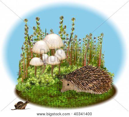 Erizo y caracol se encuentran entre los musgos.