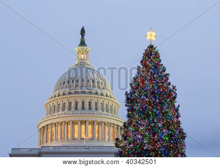 Christmas Tree In Front Of Capitol Washington Dc